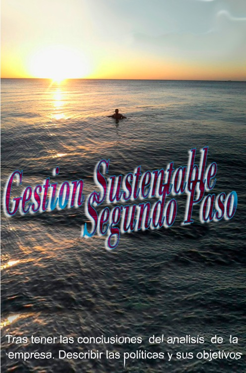 gs2017-contractual-0