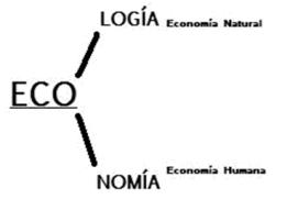 economia-ecologia-1